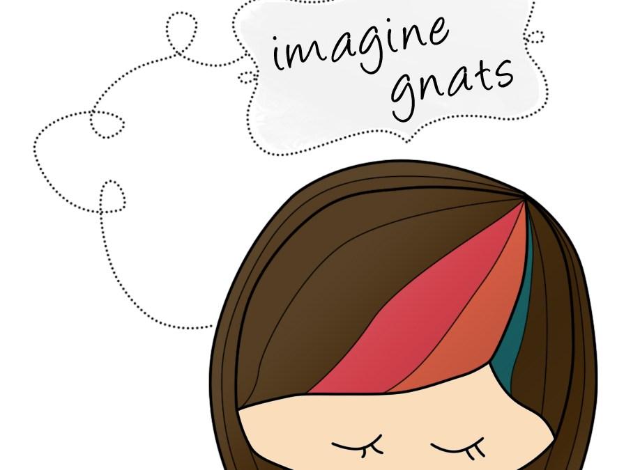 Finish Along Sponsor Highlight Post – Imagine Gnats