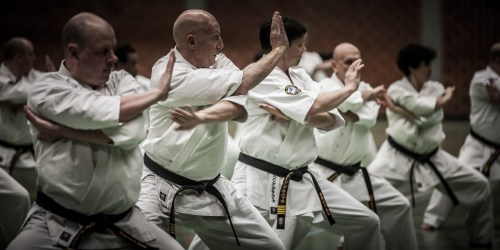small resolution of history of kyokushin kata