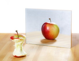 Learners imitate their teacher