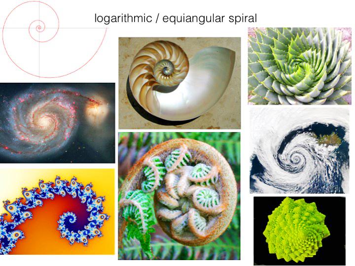 spirals adj