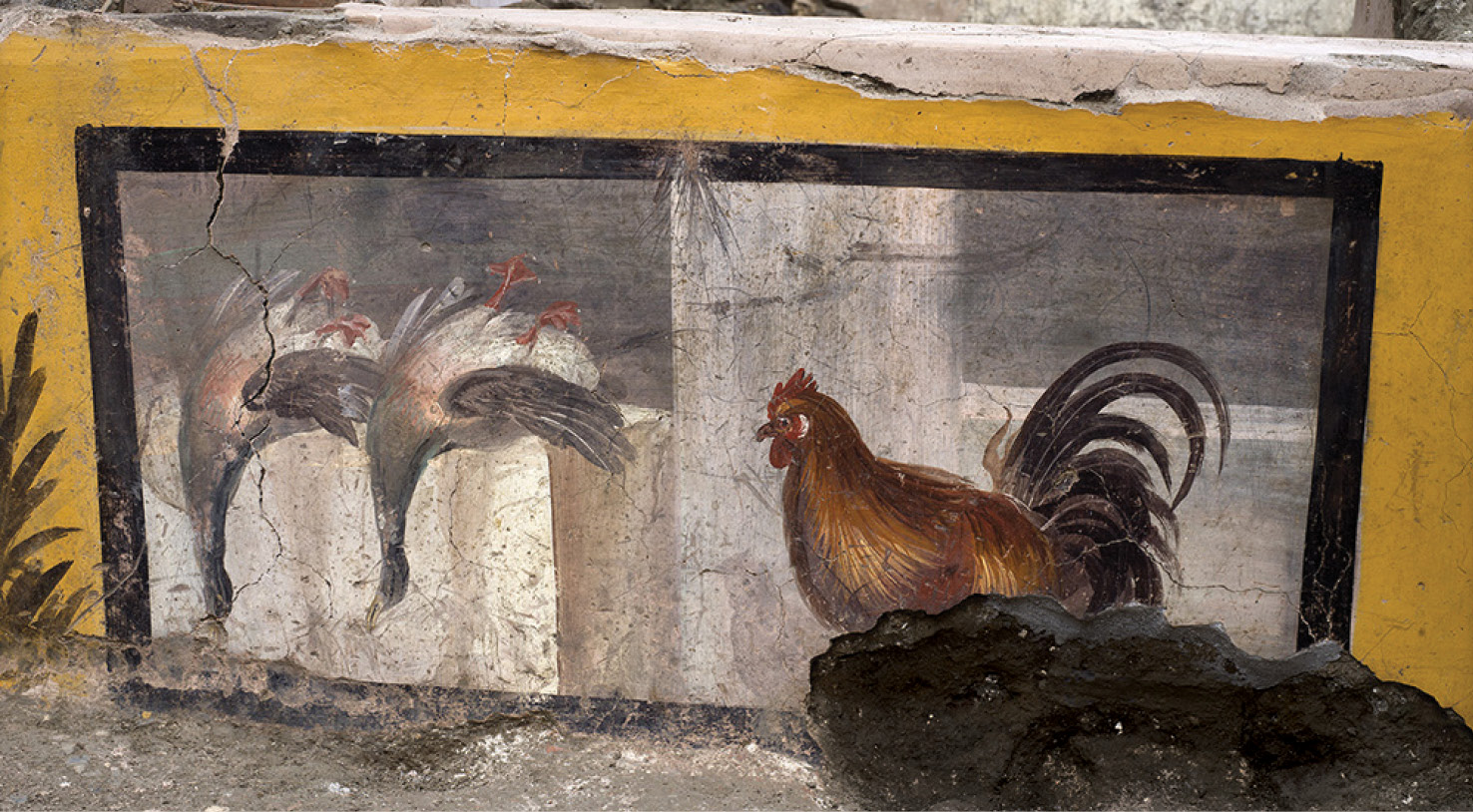 LEFT A pair of dead ducks and a rooster painted on the counter of the recently uncovered thermopolium in Pompeii.