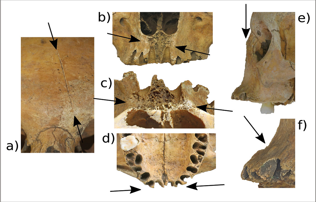 Image: Garrard Cole et al., Antiquity Publications Ltd