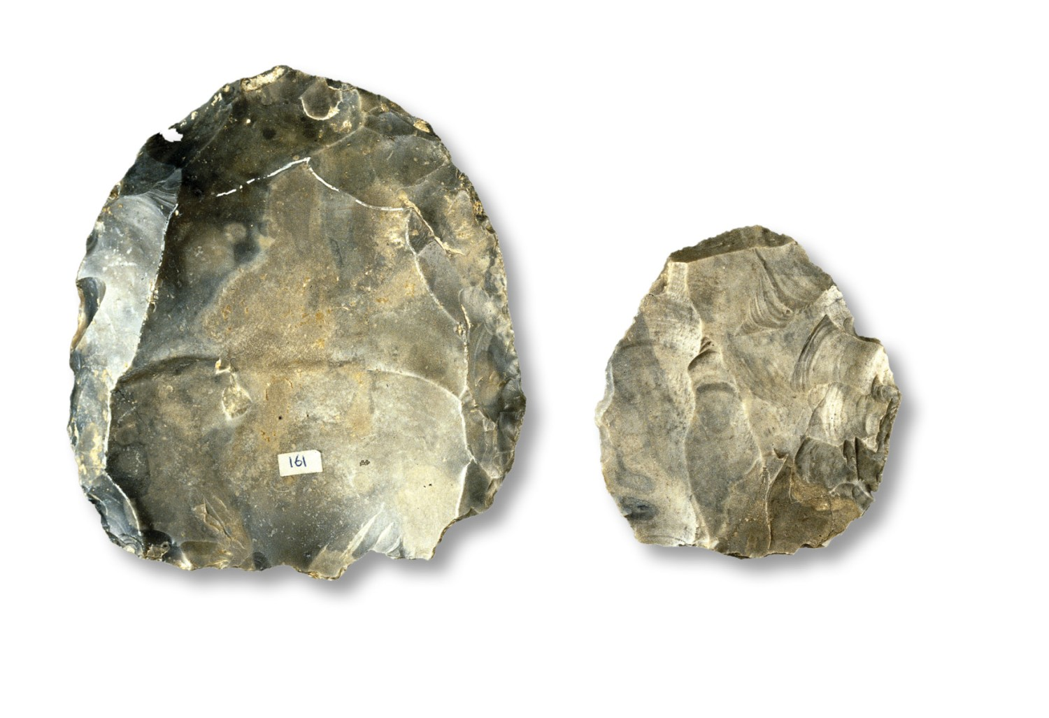 below A classic example of Levallois technology: a core that has been prepared by striking off small shaping flakes. This flint example is from the collections of the British Museum.