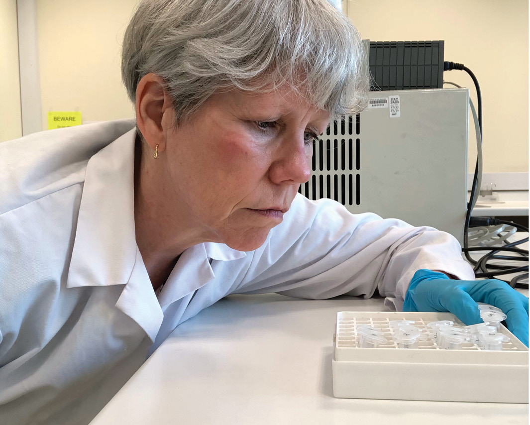 above Dr Julia Beaumont at work in her lab examining tooth samples.