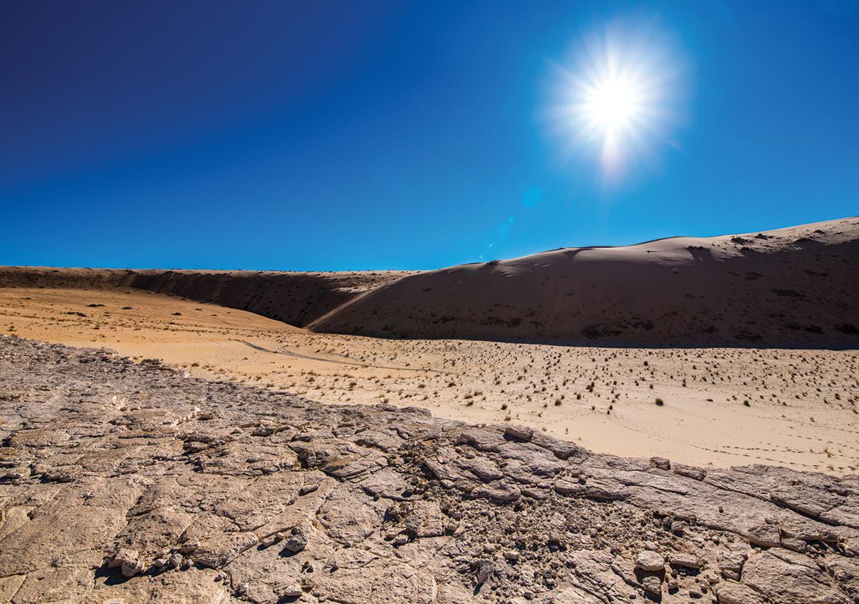 Early human footprints in Saudi Arabia