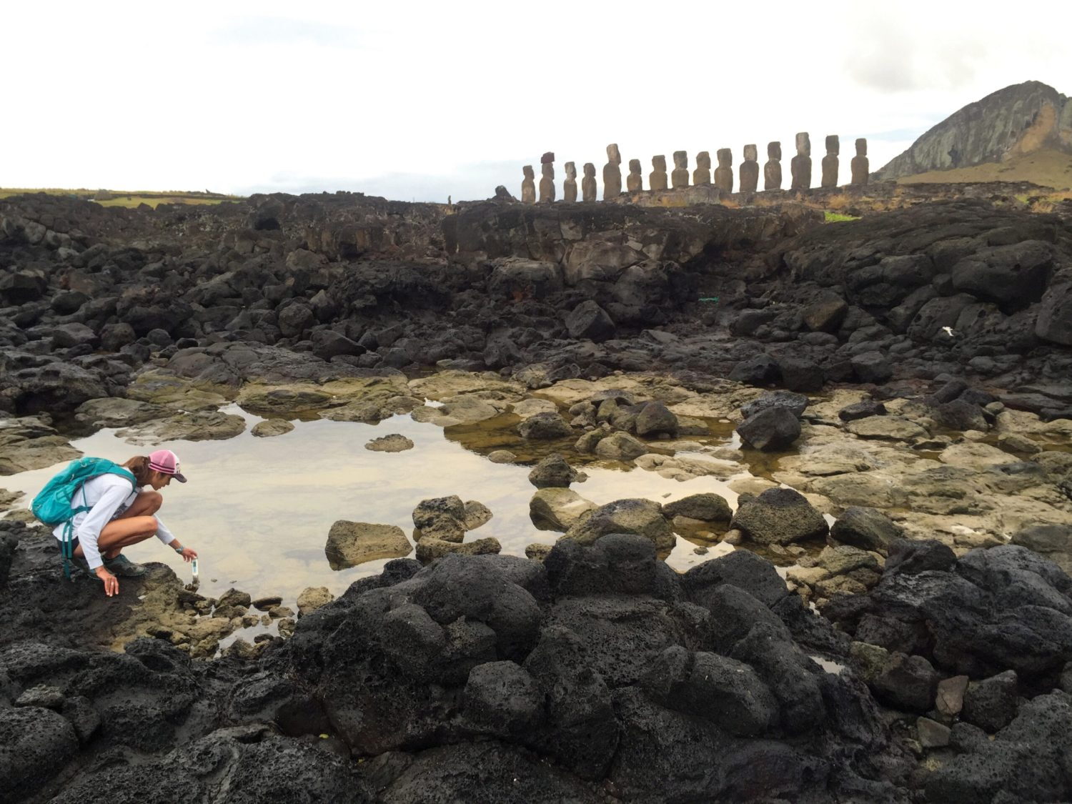 above Could the locations of Easter Island's ahu be associated with freshwater sources? A recent research project investigates the possibility of a connection. Here, Tanya Brosnan studies a coastal freshwater seep behind Ahu Tongariki.