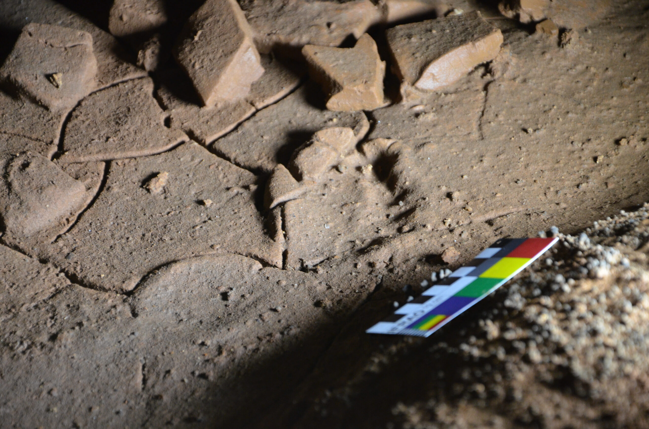 Palaeolithic children's footprints discovered in Spanish cave