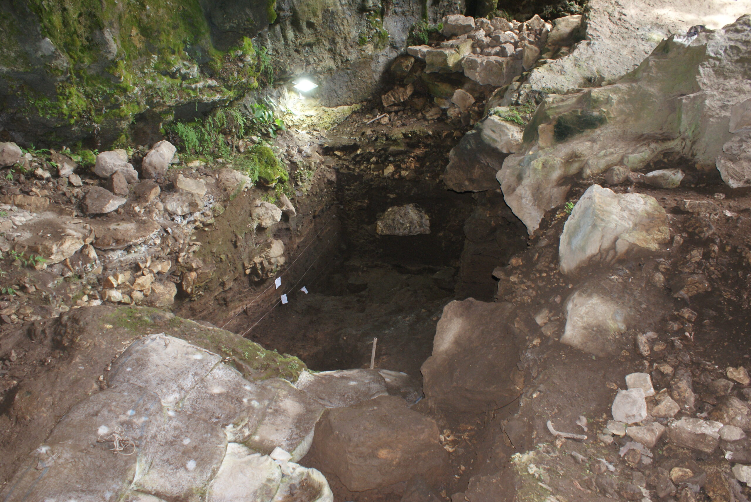 25,000-year-old human genome recovered from cave soil