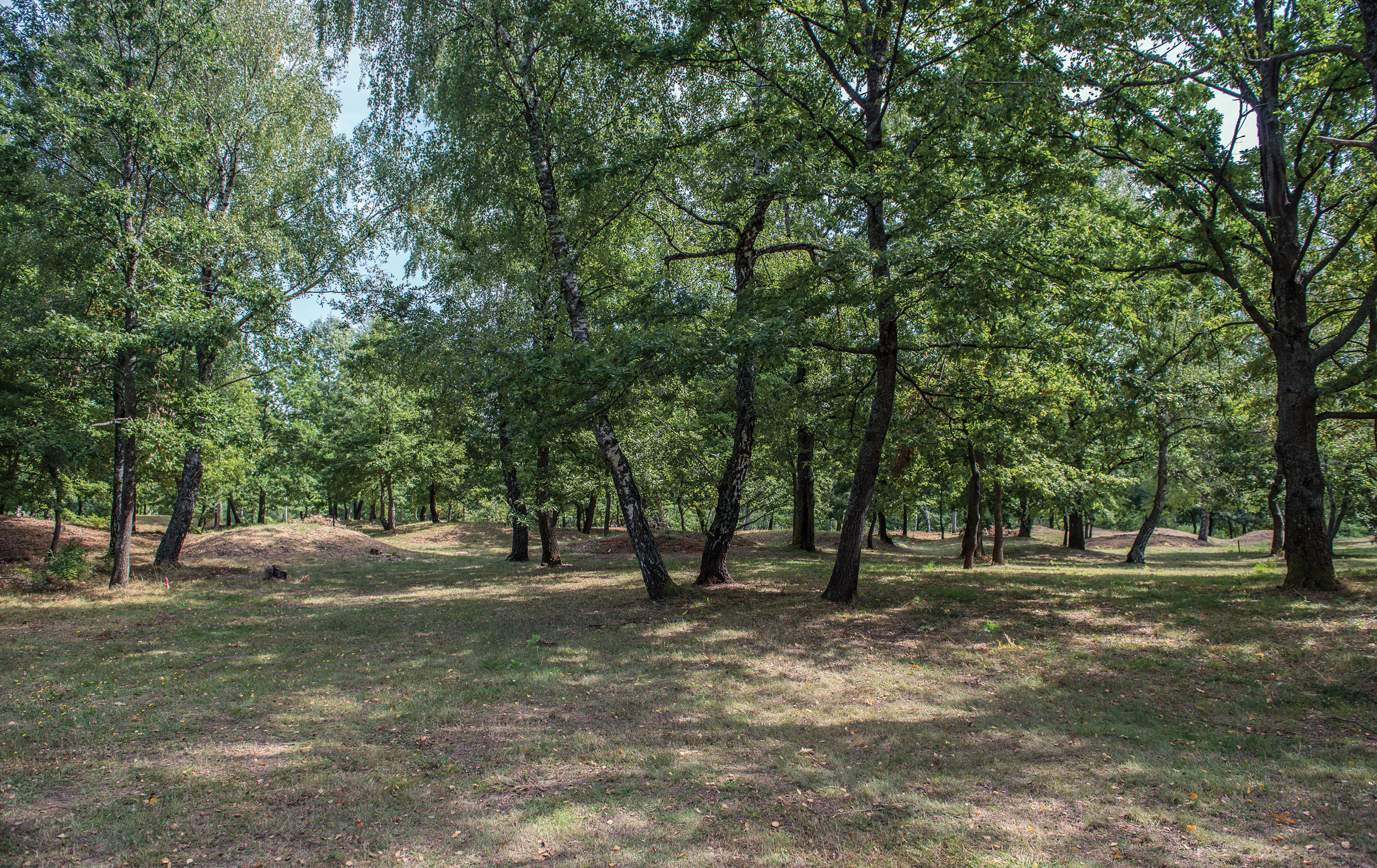 Zagreb and beyond: exploring Iron Age burial mounds on the Trail of Princes