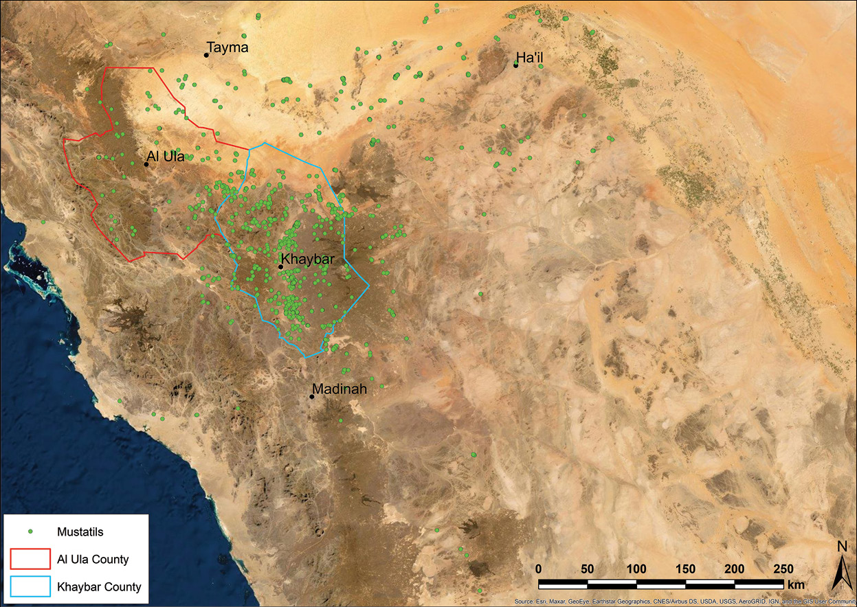 BELOW Distribution of mustatils across north-western Arabia.