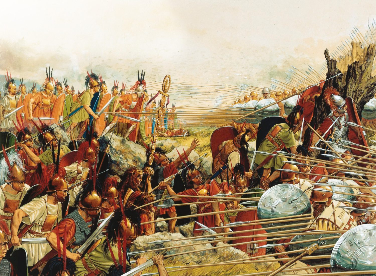 left Peter Connolly's reconstruction captures the very different fighting formations of the Macedonian phalanx and the Roman legion. This collision between two alternative ways of war decided the fate of the eastern Mediterranean in the 2nd century BC.