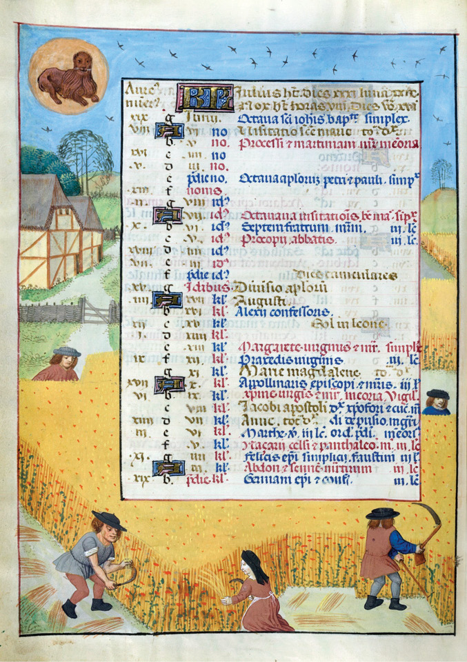 left Like their modern counterparts, medieval calendars could be illustrated with temporally appropriate images. This leaf, from a lavish 15th-century manuscript from Bruges, is decorated with an agricultural scene featuring peasants harvesting grain using sickles. Saints' feast days are listed in the centre of the page.