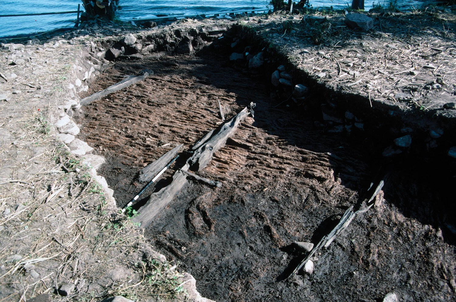 above A section of the brushwood raft, pinned down by oak beams, that supports the clay and stone platform of the crannog.