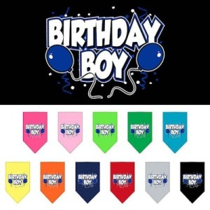 Birthday Boy Screen Print Pet Bandana | The Pet Boutique