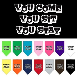 You Come, You Sit, You Stay Screen Print Pet Bandana | The Pet Boutique
