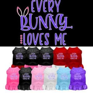 Every Bunny Loves Me Screen Print Dog Dress   The Pet Boutique