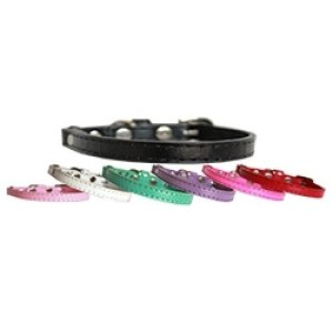 Premium Plain Cat Safety Collar | The Pet Boutique