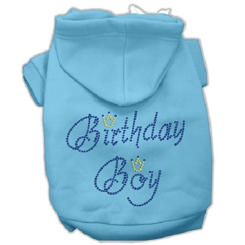 Birthday Boy Rhinestone Pet Hoodie - Baby Blue | The Pet Boutique