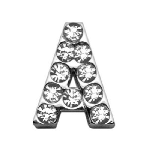 18mm Clear Crystal Letter Sliding Collar Charm - A | The Pet Boutique