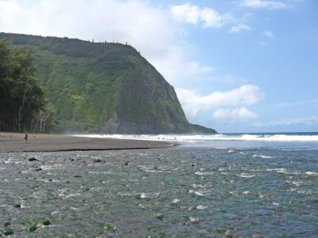 Beach at Waipio Valley