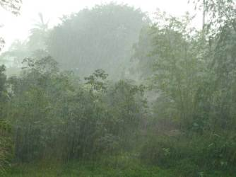 hawaii island hard rain