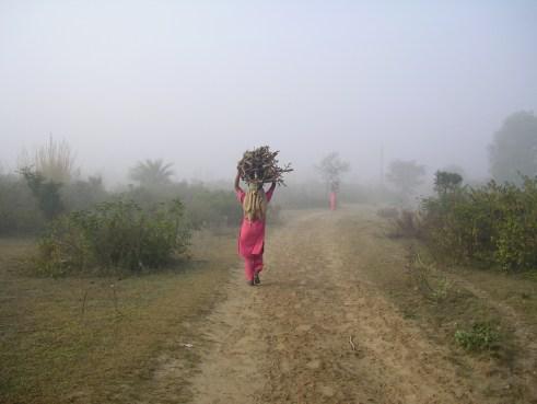 Punjab, India, countryside