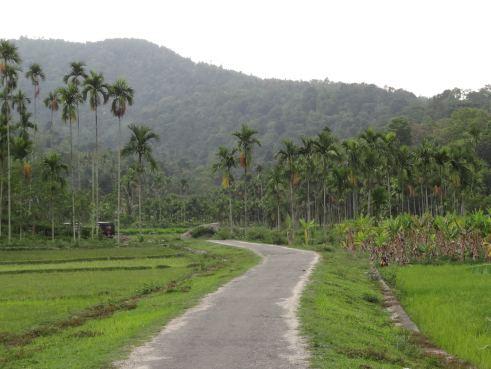 North Kerala, Wayanad, Wayanad Kerala, Kerala holidays, offbeat kerala