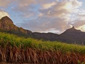 Mauritius what to do, Mauritius ecotourism