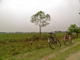 Majuli Island, Majuli photos, Assam Majuli