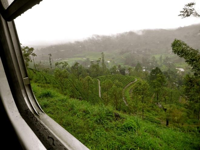 train kandy to ella, sri lanka hill country, Sri Lanka photos, train to ella