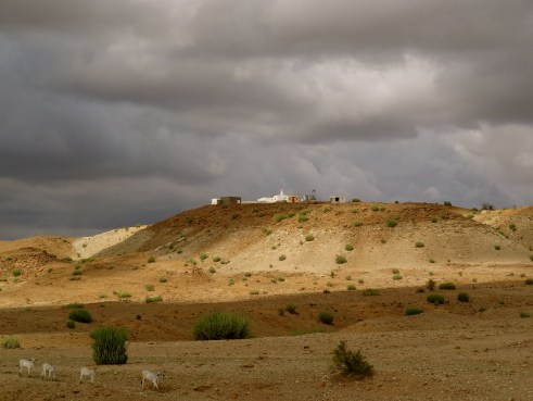 Rajasthan monsoon, Jaisalmer photos, Thar desert Rajasthan, Thar desert weather