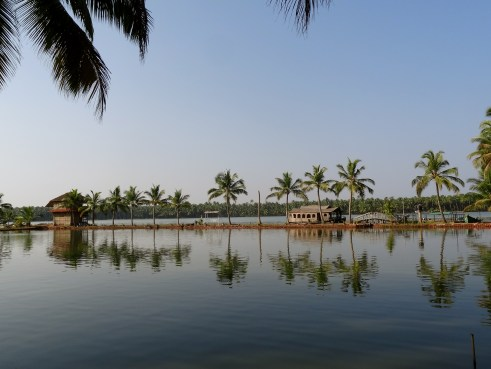 Oyster Opera, Kerala backwaters, North Kerala, Kasaragod, India Untravelled