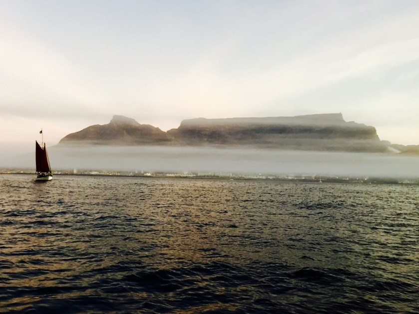 Table bay, table bay cruise, table mountain, why visit south africa