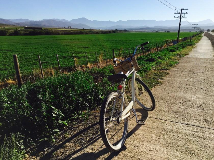 Oudtshoorn south africa, Oudtshoorn, cycling south africa