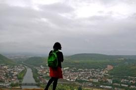 Rudesheim am rhein, Rheingau germany