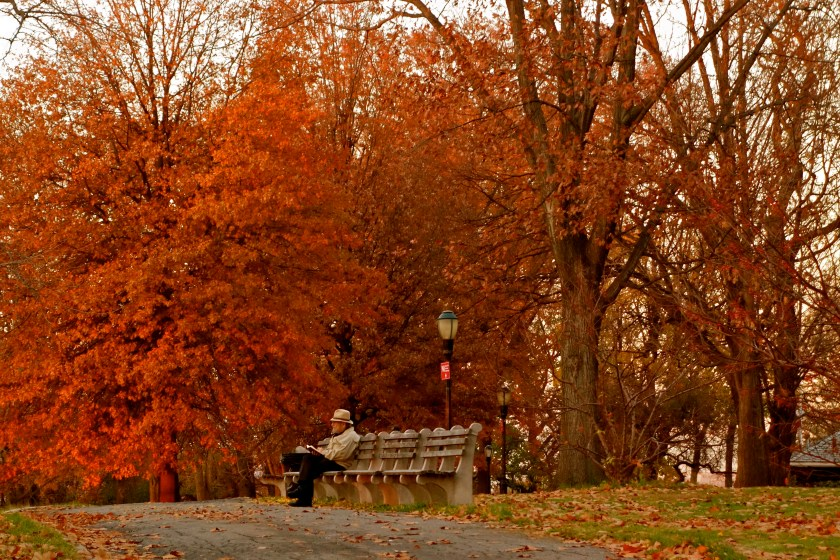autumn blogs, autumn new york, autumn essay