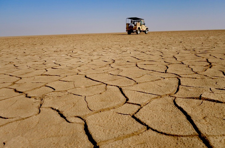 little rann of kutch, gujarat places to visit, gujarat travel guide, offbeat gujarat, little rann of kutch guide