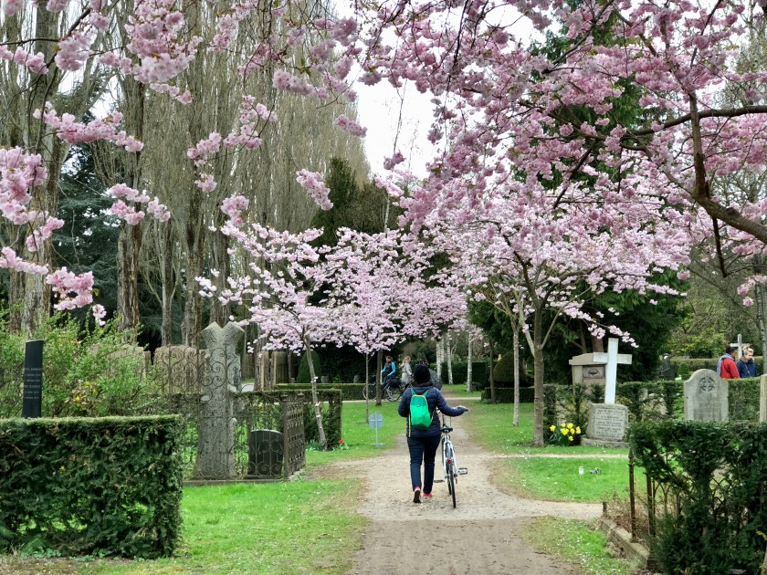 assistens cemetery, HC anderson, best things to do in copenhagen