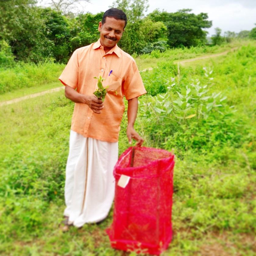 world environment day, world environment day article, world environment day india