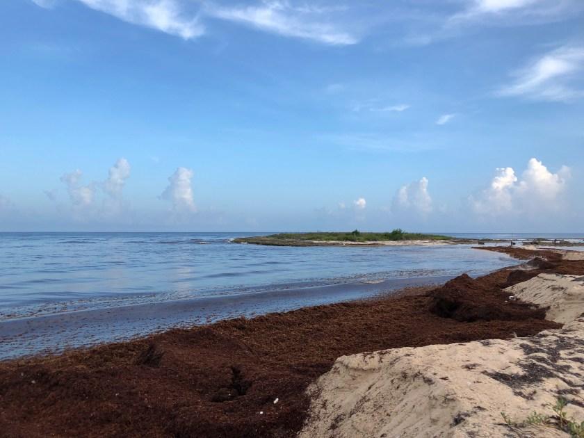 volunteering in cuba, ioi adventures cuba, cuba travel blog