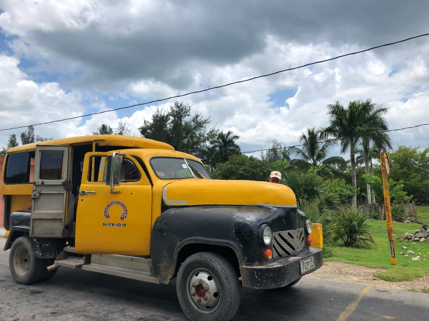 volunteering in cuba, cocodrilo cuba, cuba travel