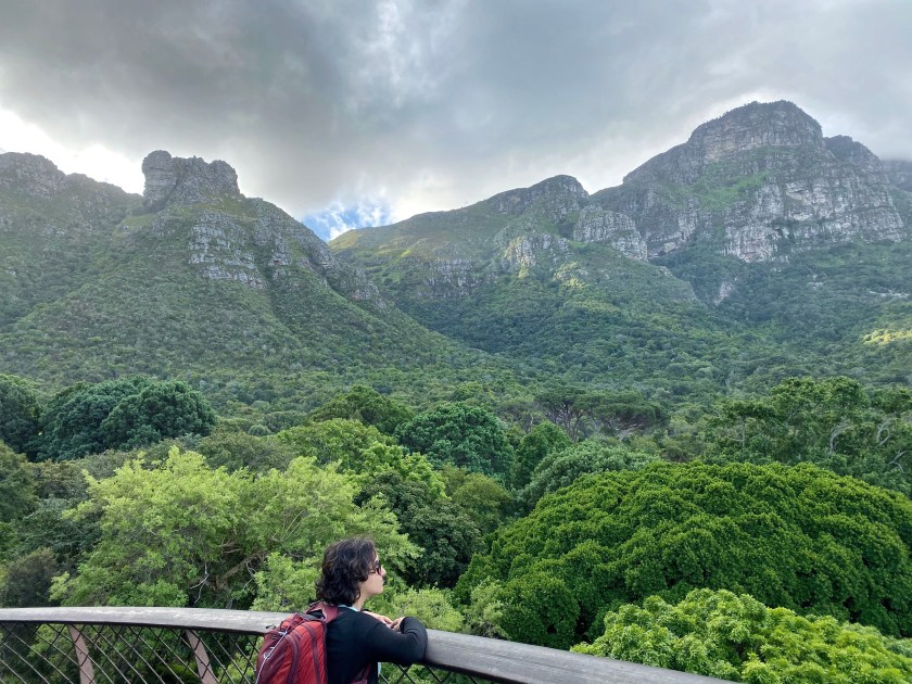 kirstenbosch botanical gardens, south africa things to do in cape town