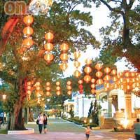 中秋遊園看燈賞月 - 太陽報