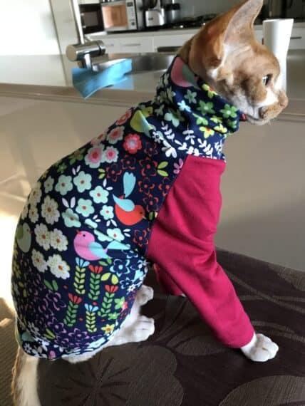 Cat Sweater Pattern Sewing : sweater, pattern, sewing, Sphynx, Zovala, Chitsanzo, Kuyesedwa, Tailoress