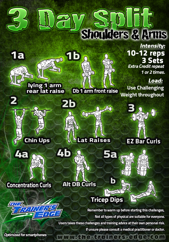 Weight Lifting Workout Schedule6 Day Full Body Lift And Circuit