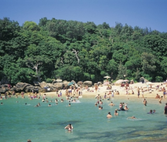 Shelly Beach Is Protected From The Ocean Waves By The Reef Which Is Located On The Right Side Of The Beach And Faces West On The Most Westerly Point Of The