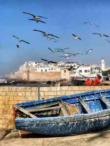 morocco travel requirements,  morocco trip travel,  morocco video travel,  my morocco travel,  ask morocco travel