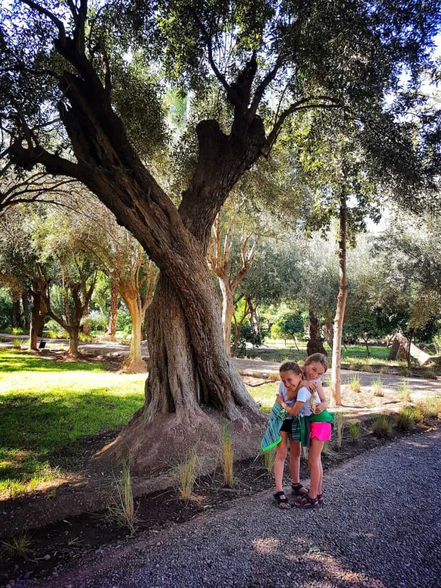 you can hide from Marrakech hassle in one of the parks - Marrakech with kids
