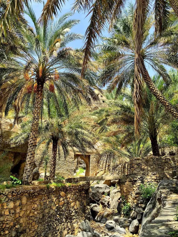 thinga to see in Oman - Misfat al Abriyeen