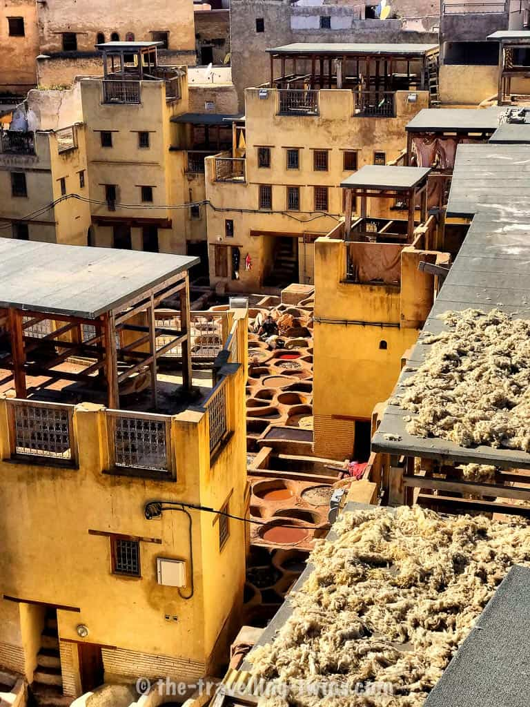 Chouara Tannery - Tannery in Fez